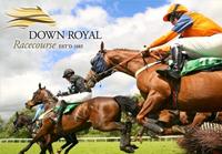 Down Royal Odds