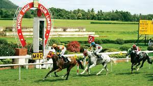 Mysore Odds