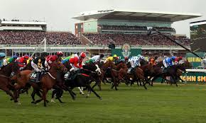 Grand National 2014 Odds
