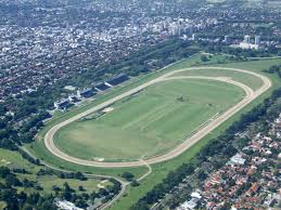 Hipódromo de San Isidro Odds