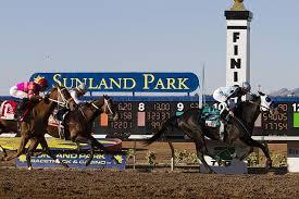 Sunland Park Odds