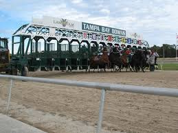 Tampa Bay Downs Odds